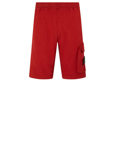 65860 'OLD' DYE TREATMENT Fleece Shorts in Brick Red