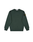 61040 Sweatshirt in Bottle Green