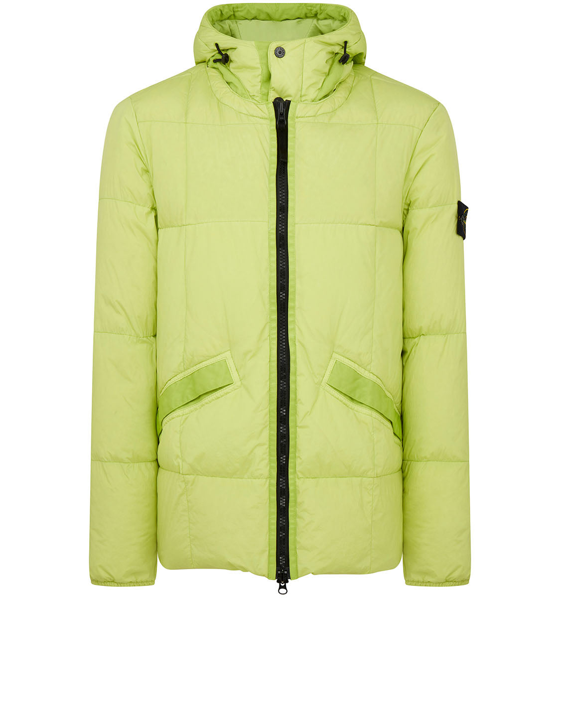 40223 GARMENT DYED CRINKLE REPS NY DOWN Jacket in Pistachio