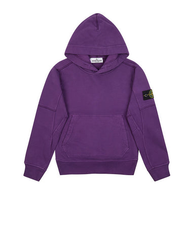 60240 Hooded Sweatshirt in Purple