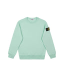 60940 Crewneck Sweatshirt in Light Green