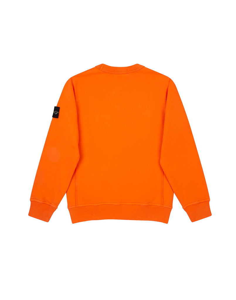 60940 Crewneck Sweatshirt in Orange