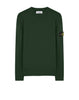 591A1 Crewneck Knit in Dark Forest