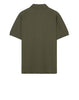 22317 Polo Shirt in Olive