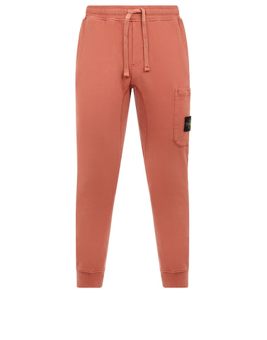 60320 Jogging Pants in Rust