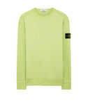 62720 Crewneck Sweatshirt in Pistachio