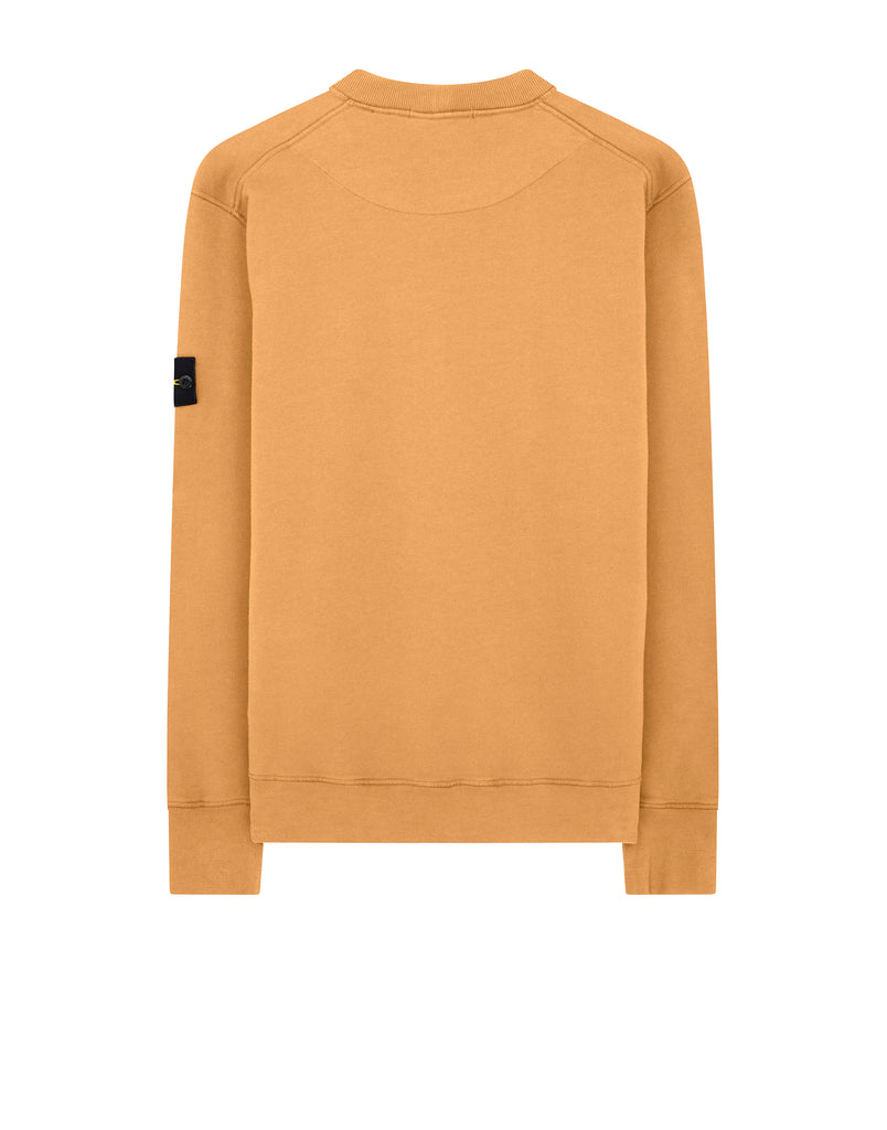 63020 Sweatshirt in Orange