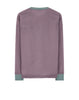 62434 POLY-COLOUR FRAME-TC: Crewneck sweatshirt in Sage