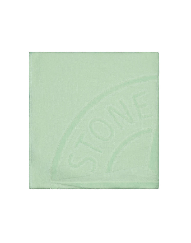 91062 Beach Towel in Light Green