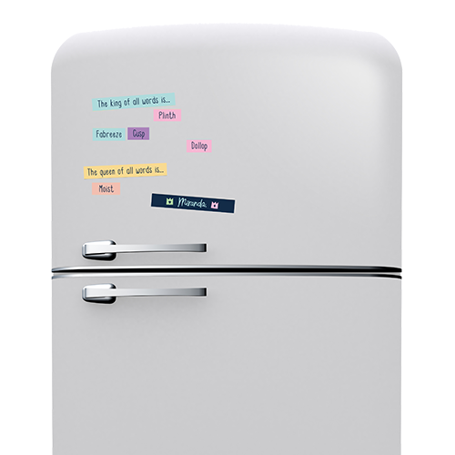 Fridge Magnet Word Game