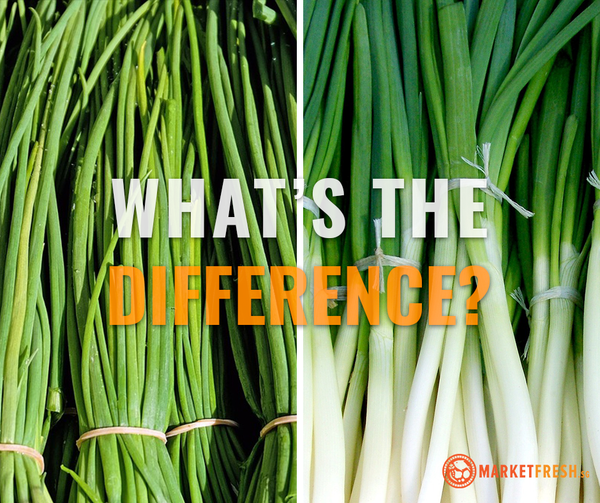 Know your herbs: Spring Onions vs Chives