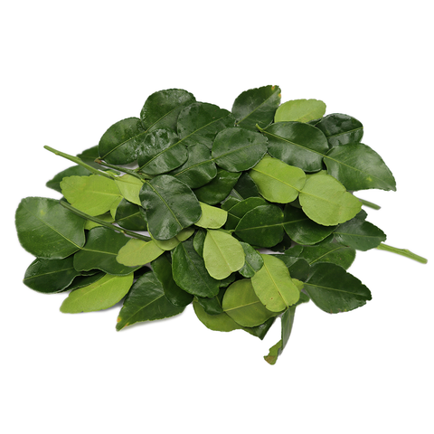 Lime Leaves (50g)