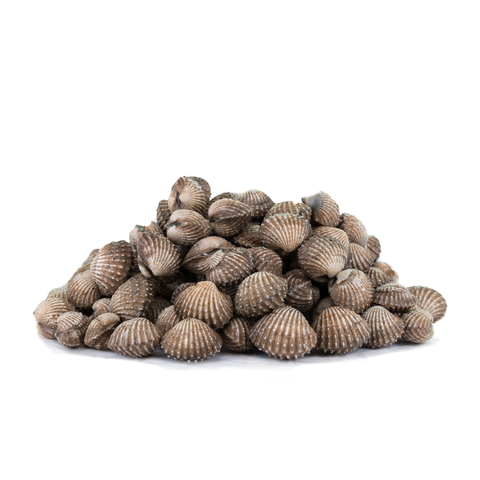 Fresh Cockles (1KG)