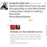 Anonymous Tweet or Facebook Message - The Incognito Help Line - 2