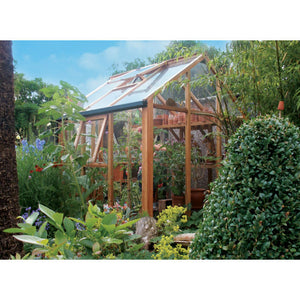Gabriel Ash 6x6 Essentials Wooden Greenhouse - Gardenbox