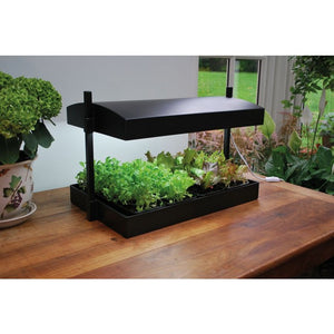 Garden Hydroponics Grow Light in Black - Gardenbox