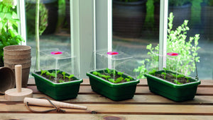 Mini High Dome Propagator - Gardenbox