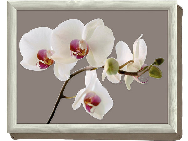 Creative Tops Orchid Harmony Cushion Lap Tray