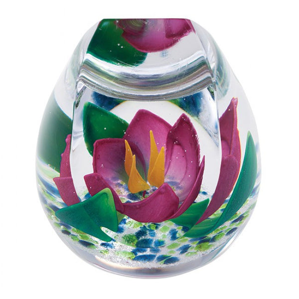 Caithness Glass Hot House Collection Mirrored Garden Paperweight