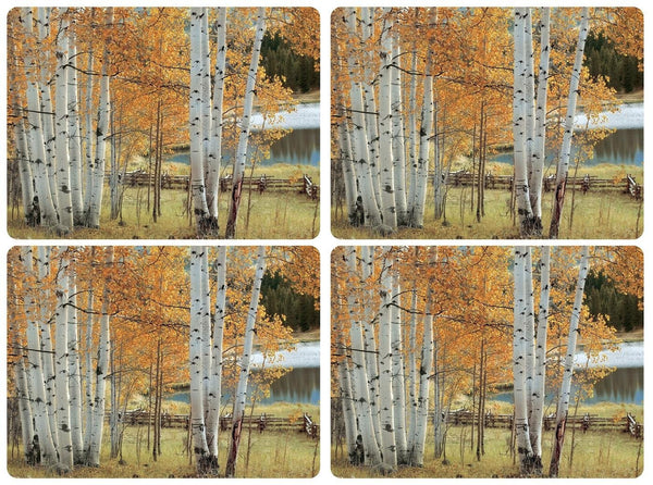 Pimpernel Birch Beauty Placemats 40.1cm by 29.8cm (Set of 4)