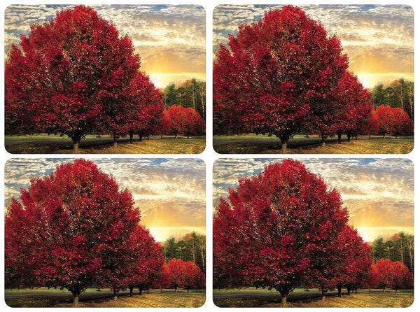 Pimpernel Crimson Trees Placemats 40.1cm by 29.8cm (Set of 4)