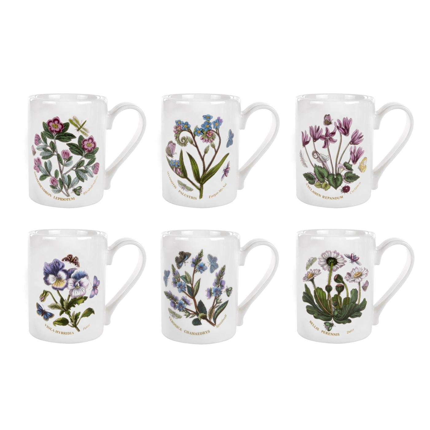 Portmeirion Botanic Garden Coffee Mug 10oz