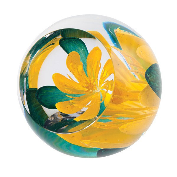 Caithness Glass Limited Edition Celandine Paperweight