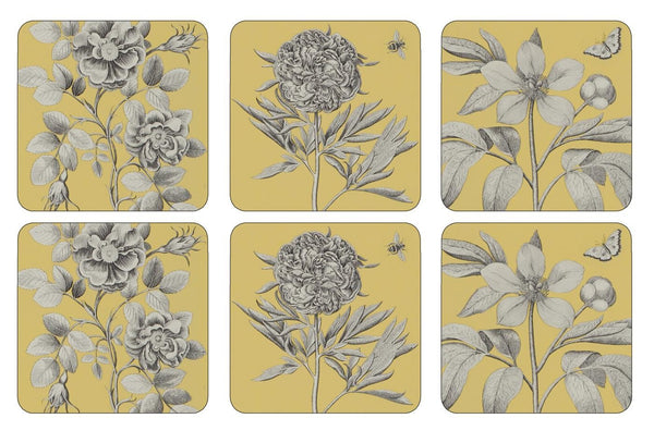 Pimpernel Etchings And Roses Yellow Coasters 10.5cm By 10.5cm (Set Of 6)