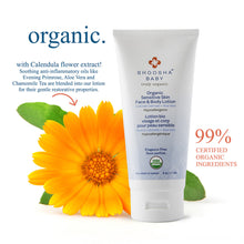 biodegradable , organic, hypoallergenic, non-gmo, nut-free, dairy-free, face and body lotion, USDA, vegan, fragrance free, baby