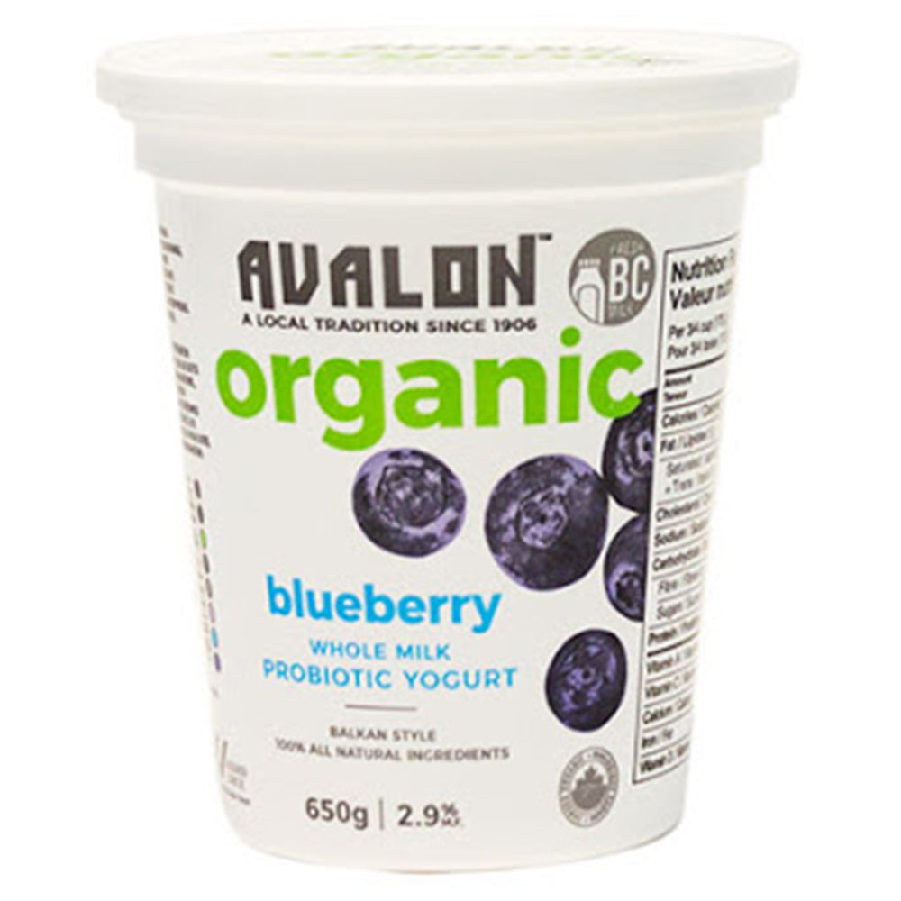 Avalon Organic Blueberry Yogurt