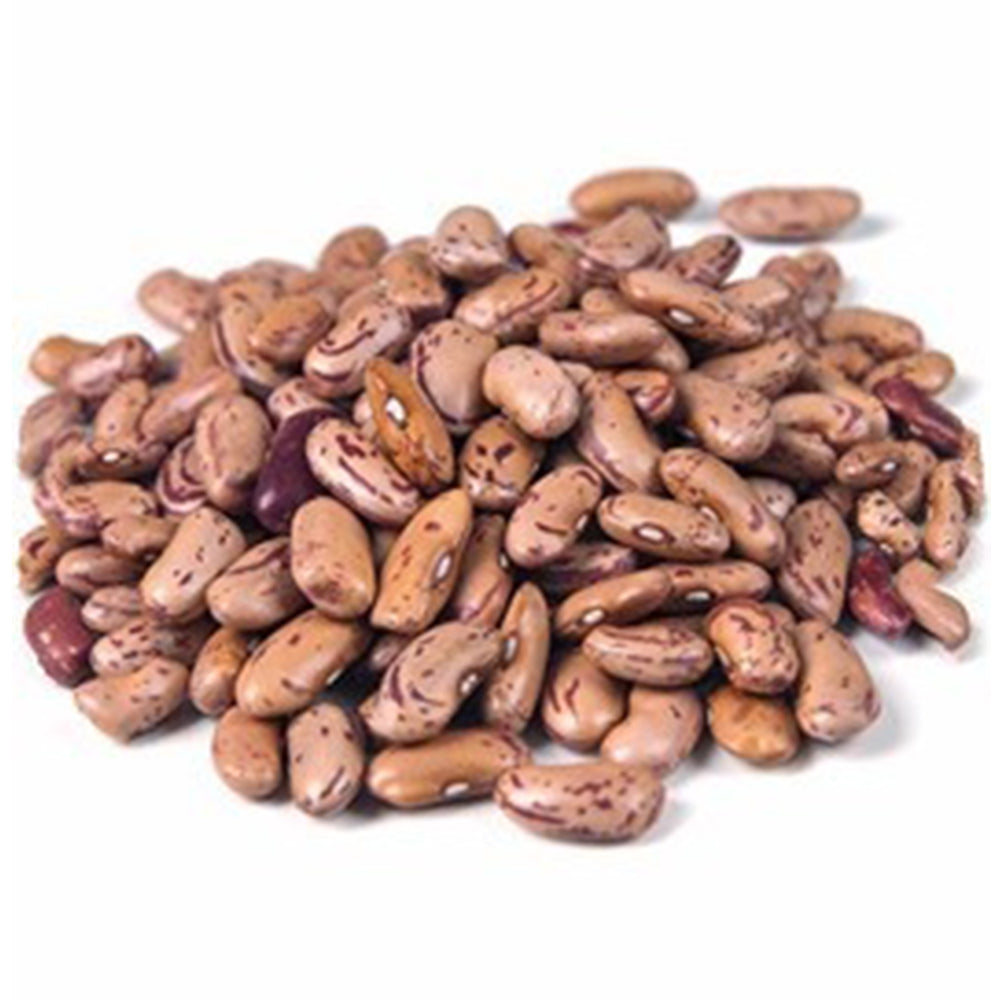 Organic Dried Pinto Beans