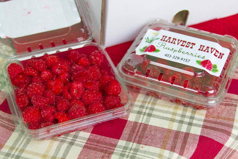 Raspberries - Harvest Haven