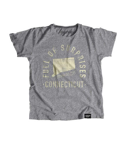 State of Connecticut Motto Youth Shirt - Parkway Prints