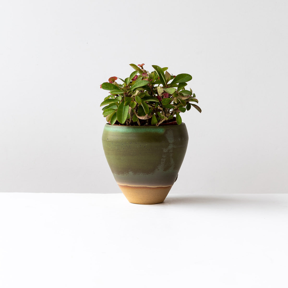 Kaki Green Flower Vase Handmade in Stoneware - Sold by Chic & Basta