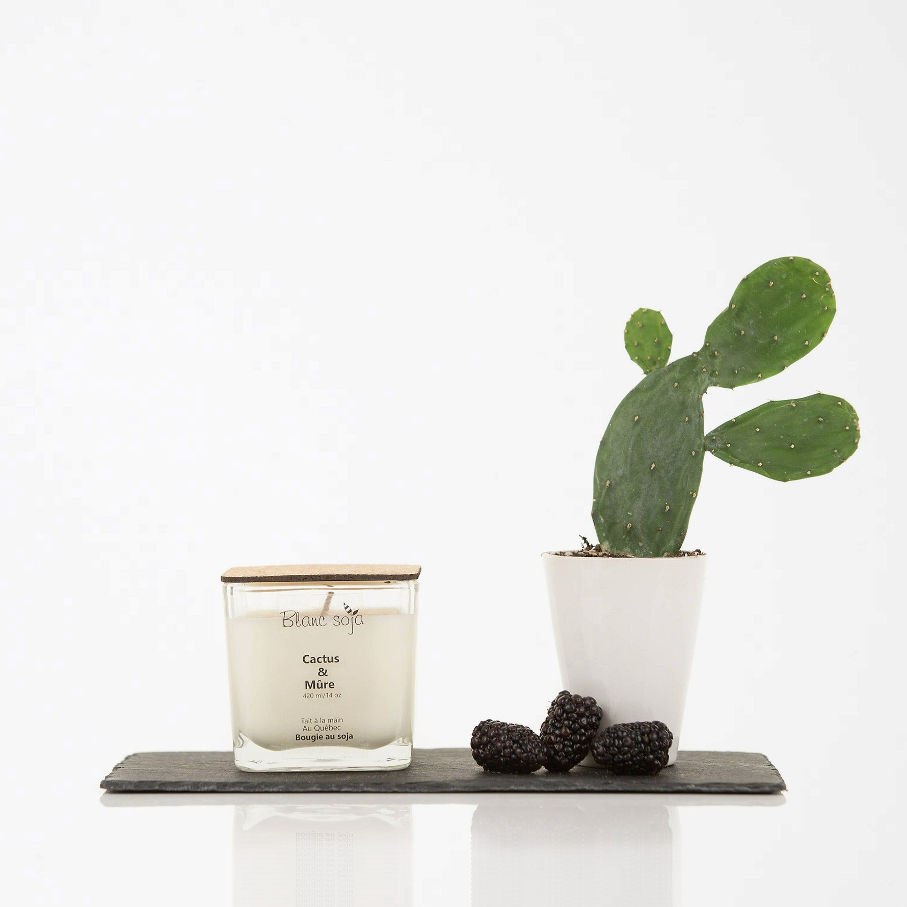Cactus & Blackberry - Soy Candle - 60 Hours - 420 ml / 14 oz. - Sold by Chic & Basta