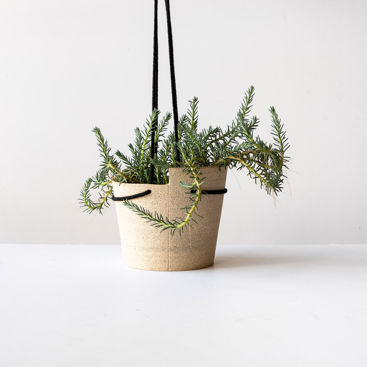 Large Beige Speckled Stoneware Hanging Planter With Plant- Sold by Chic & Basta