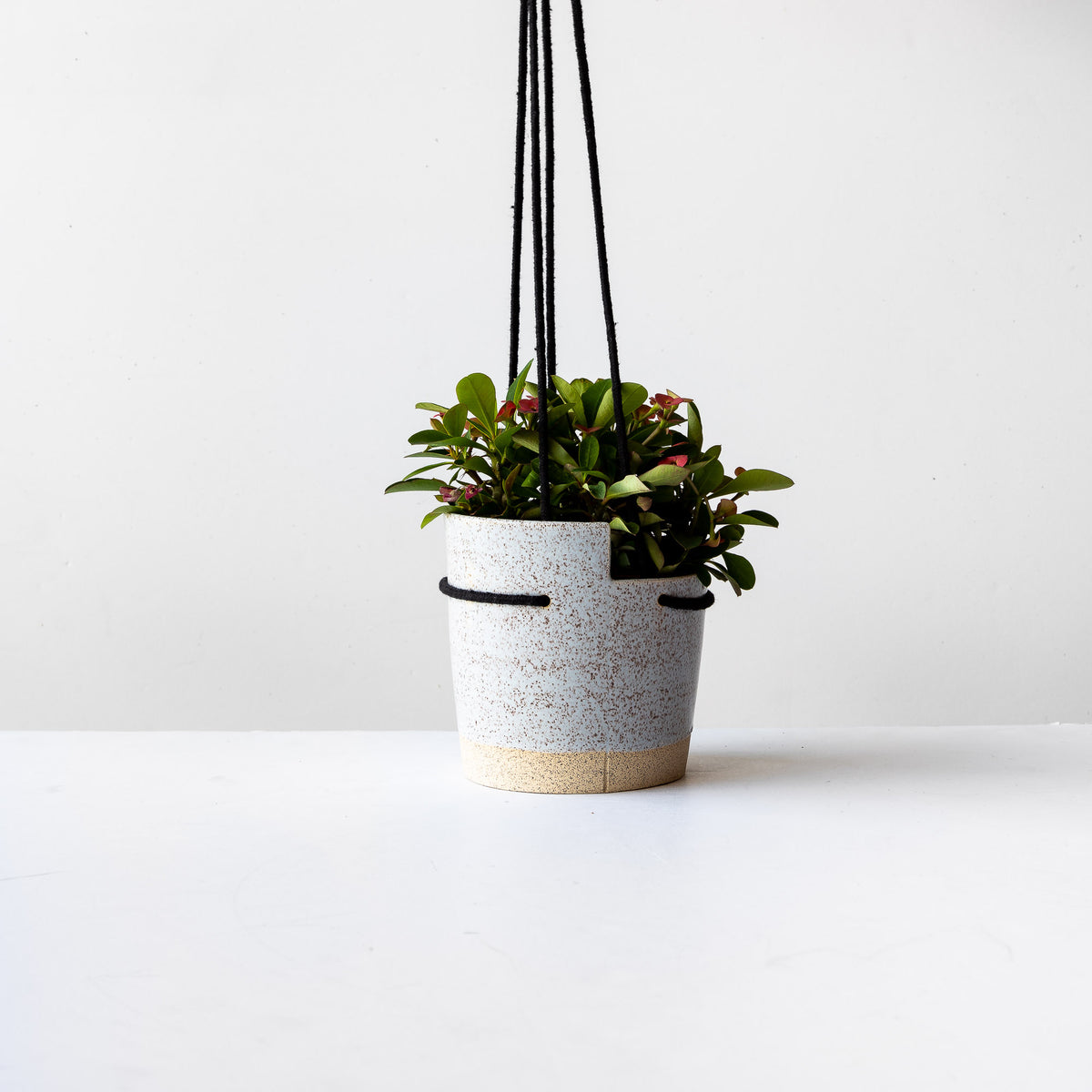 Small Blue Speckled Stoneware Hanging Planter With Plant- Sold by Chic & Basta