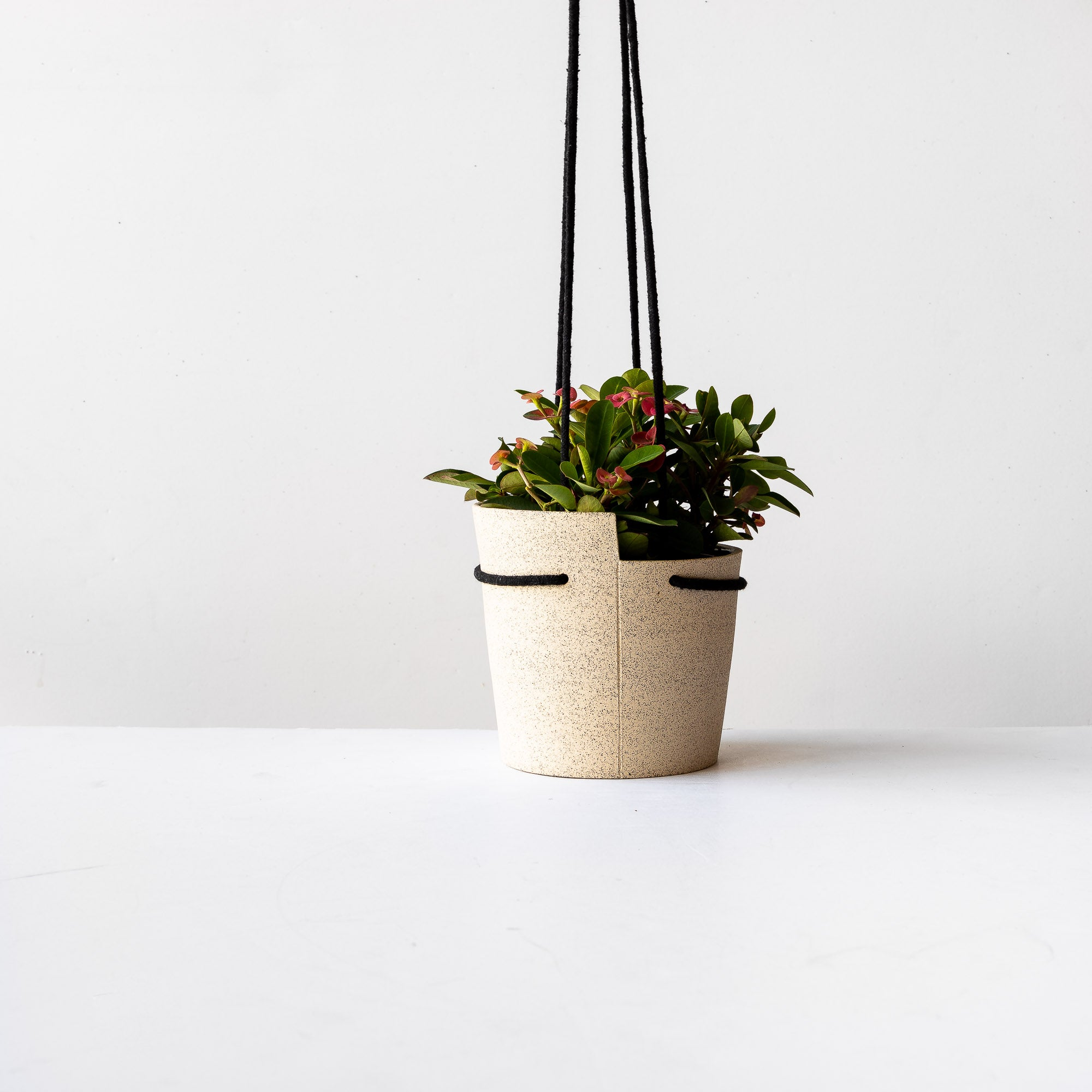 Small Beige Speckled Stoneware Hanging Planter With Plant - Sold by Chic & Basta