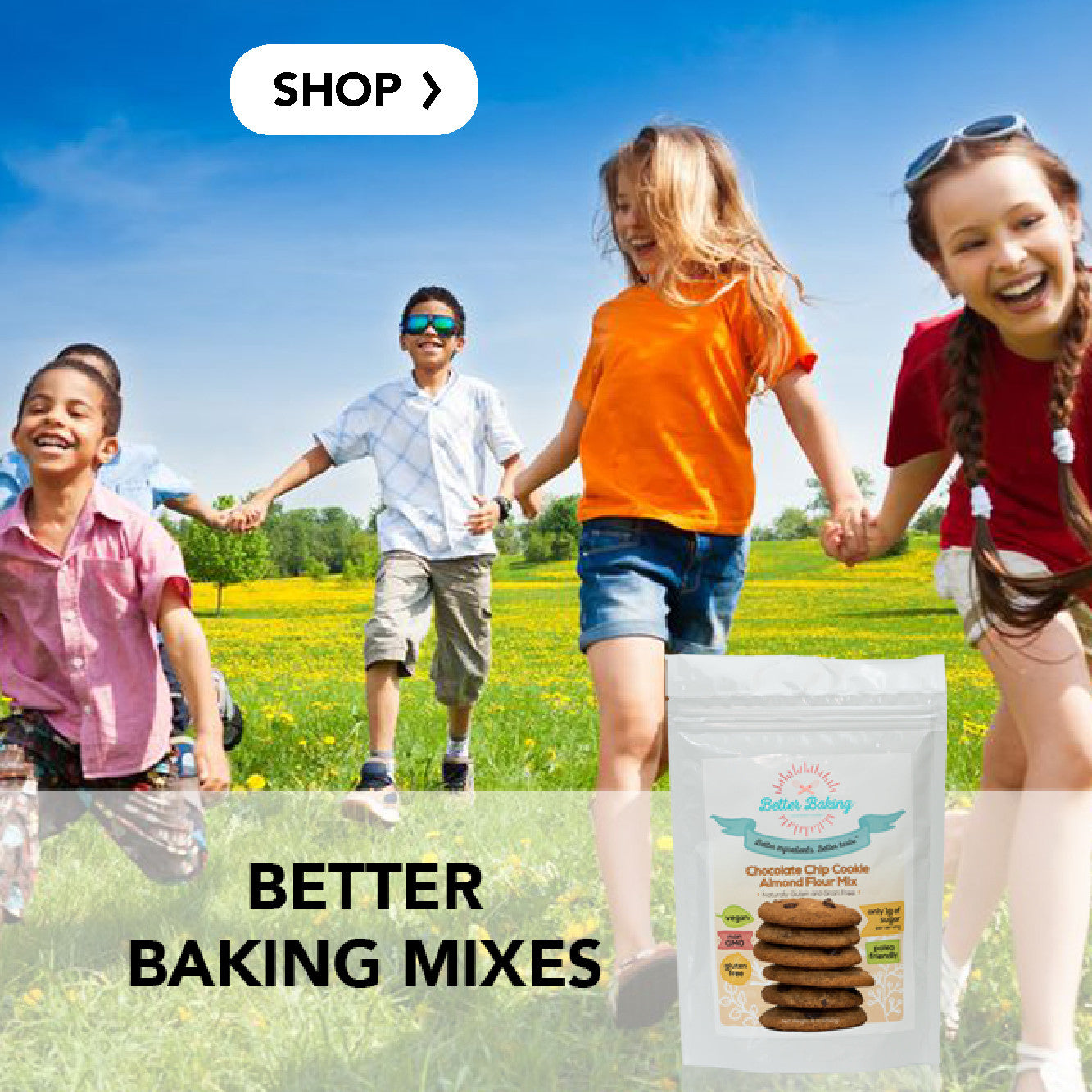 Better Baking Mixes