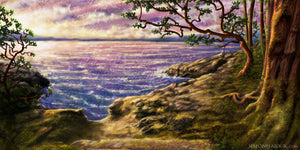 Secret Cove - Canvas Prints