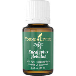 Young Living Eucalyptus Globulus 15 ML 100 % Therapeutic Grade Essential Oil Supplement