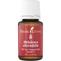 Young Living Melaleuca alternifolia ( Tea Tree ) 15 ML 100% Pure Therapeutic Grade Oil Supplement