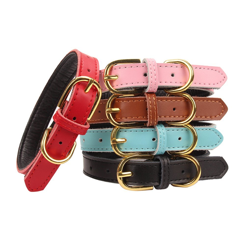 Basic Classic Padded Leather Pet Collars for Cats Puppy Small Medium Dogs in many colors