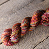 P853 (Rust Rainbow) Bellish Yarn