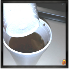 Create a tea filter with a styrofoam cup