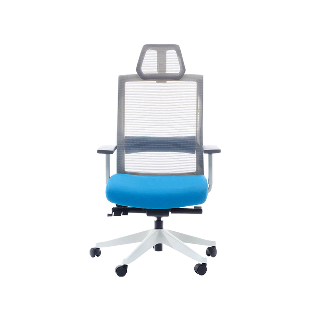 Ergonomic Office Chair