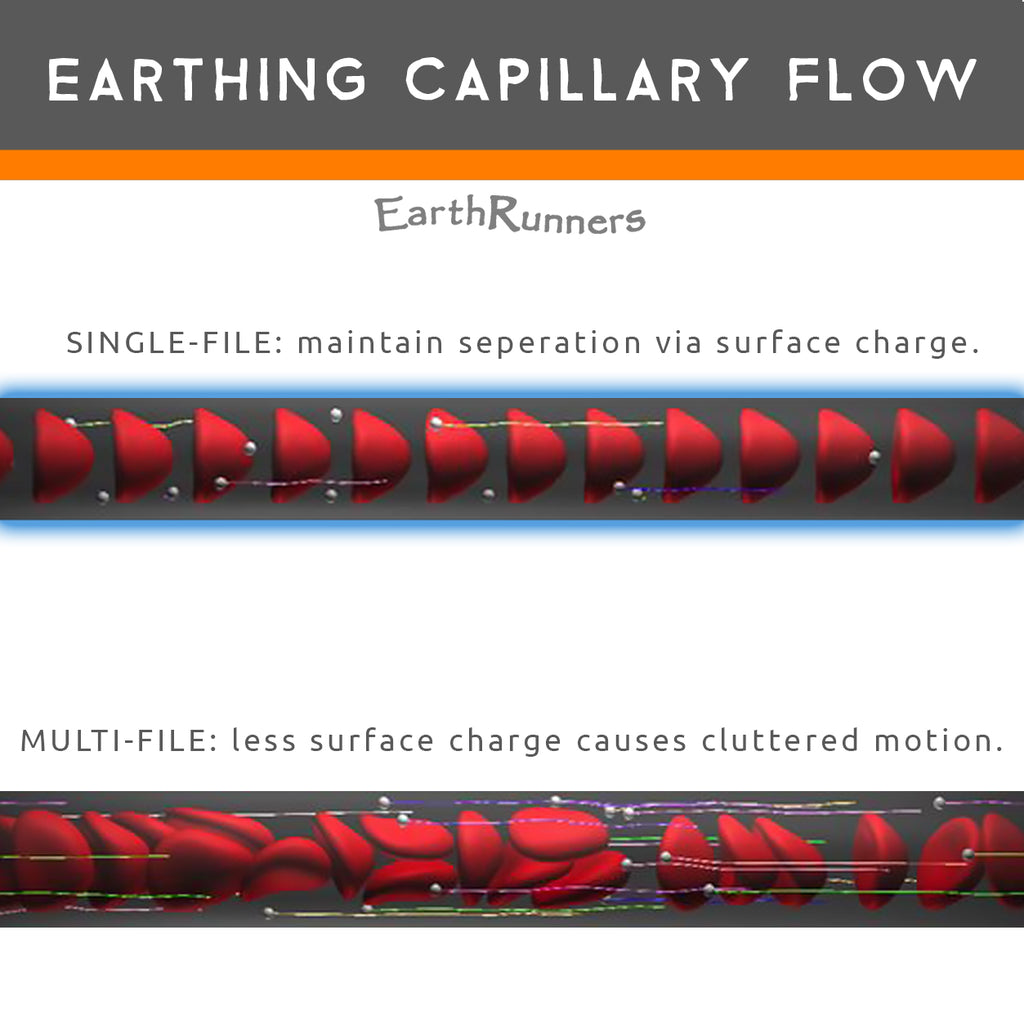 earthing affects capillary blood flow