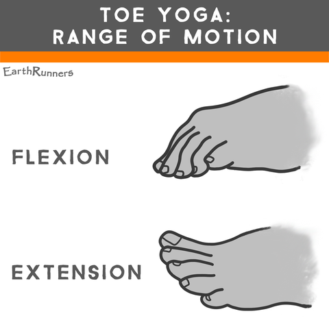 foot flexion toe extension