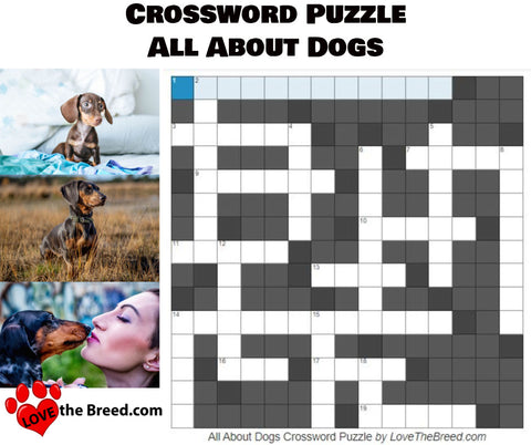 All About Dogs Crossword Puzzle