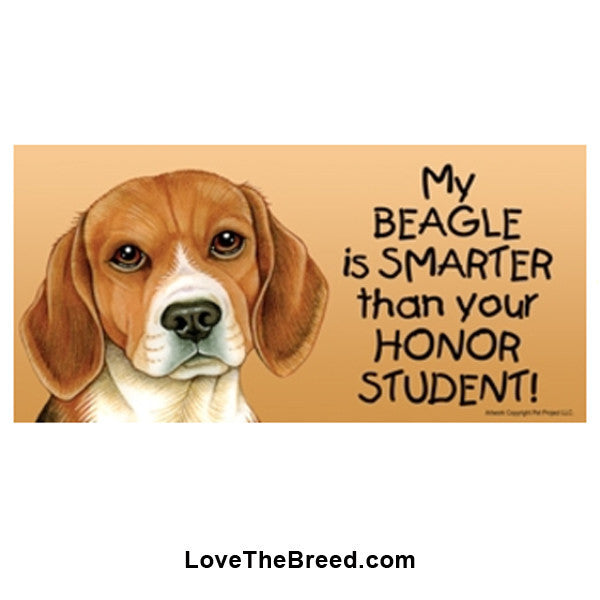 My Beagle is Smarter than Your Honor Student